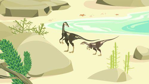 Le Compsognathus | Camille Touaty  (auteur)