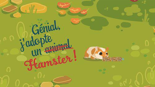 Génial, j'adopte un hamster ! | Florence Blanquart  (auteur)