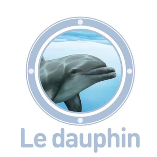 Le dauphin | Emmanuel Chanut (auteur)