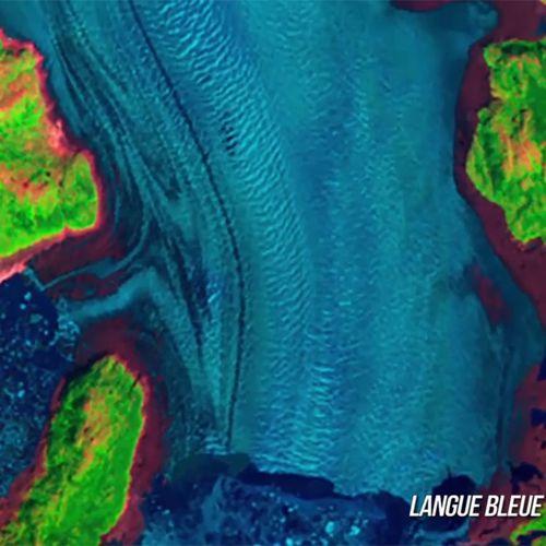 Langue bleue | Laurent Orluc (directeur)